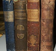 Old books by saiberiac