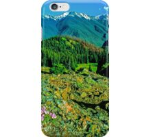 VIEW,OBSTRUCTION POINT iPhone Case/Skin