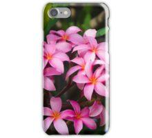 Pink Frangipani (plumeria) flower iPhone Case/Skin