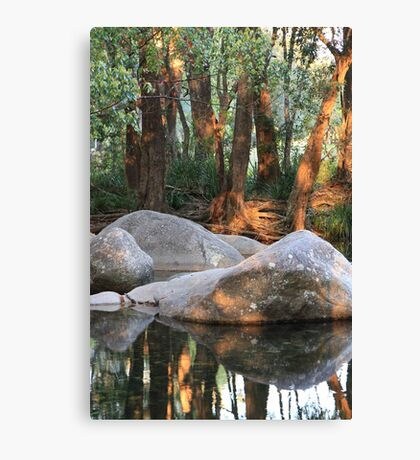 afternoon peace Canvas Print