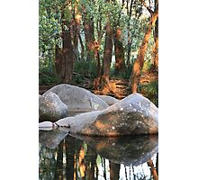 afternoon peace Photographic Print