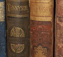 Old books Sticker