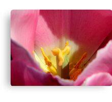 Garden Work-Tulip Macro     ^      Canvas Print