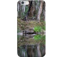 Reflections of Promised Land iPhone Case/Skin