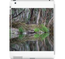 Reflections of Promised Land iPad Case/Skin