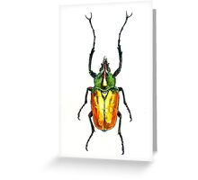 Theodosia perakensis beetle Greeting Card