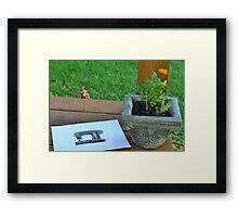 Peeking Hen Framed Print