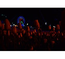 Floriade Night Fest, 2014 Photographic Print