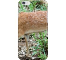 THE TINY, SHY, SHARPE'S GRYSBOK – Raphicerus sharpie iPhone Case/Skin