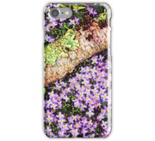 THYME-LEAVED BLUETS iPhone Case/Skin