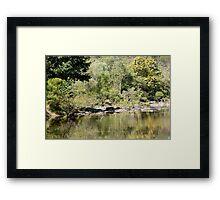 Up the creek ...... Framed Print