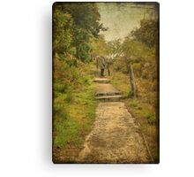 Point Possession Heritage Trail, Albany, Western Australia Canvas Print