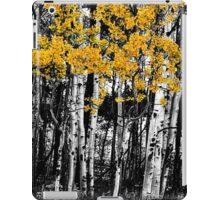 Aspen Touch of Orange iPad Case/Skin