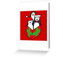 Christmas Gift Penguins Greeting Card