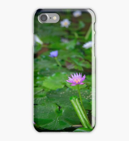 Lotus flowers iPhone Case/Skin