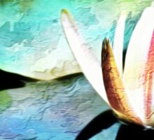 Water Lily Reflection Sticker