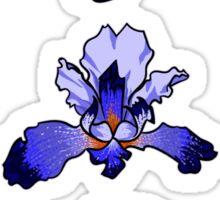 Iris -  February Birth Month Sticker