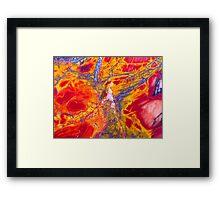 Cherry Tree On Fire (Cherry Creek Jasper) Framed Print