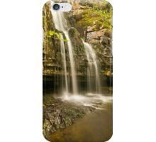 Spring Waterfall iPhone Case/Skin