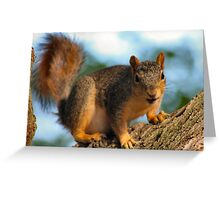 Busy Guy Greeting Card