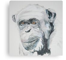 Chimp Canvas Print