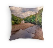 River Swale in Autumn Throw Pillow