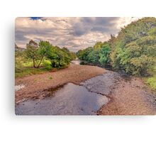 River Swale in Autumn Metal Print