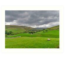 Yorkshire Dales View Art Print