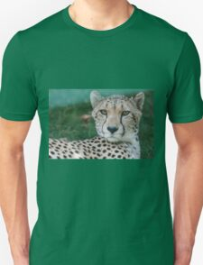 leopard at the zoo Unisex T-Shirt
