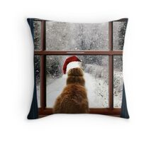 Leo and so much snow! Throw Pillow