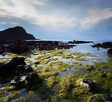 Giants Causeway, Ireland by Megan McCrystal