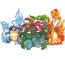 Pokemon Gen I Starters Photographic Print