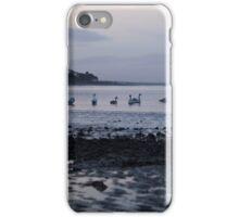 Swans, Highlands of Scotland iPhone Case/Skin