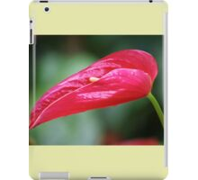 Coy - Rose Red Anthurium iPad Case/Skin