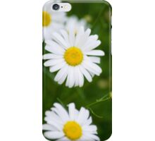 Fresh Daisy Bouquet iPhone Case/Skin
