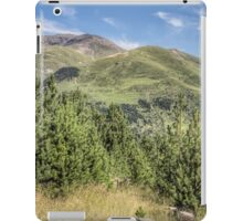 The Puigmal seen from the 'Collet de les Barraques' (Catalan Pyrenees) iPad Case/Skin