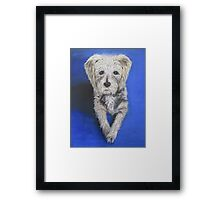 Buster - A Devoted Companion Framed Print