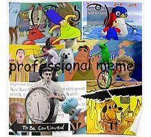 Professional Memer-2016 Poster