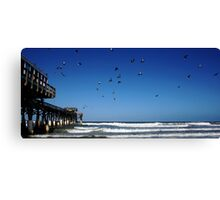 Pigeons At The Beach Canvas Print