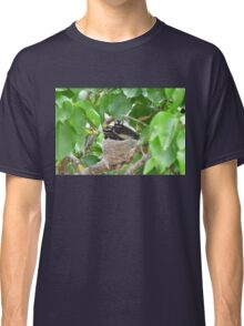 Three Little Willy Wagtails almost ready to fly! Australian native birds. Classic T-Shirt