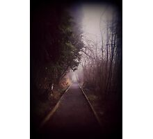 Road Less Traveled. Photographic Print