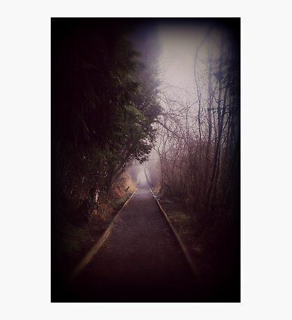 Road Less Traveled. Photographic Print