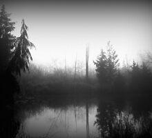 Foggy Morning by Jennifer Bishop