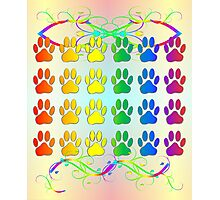 Rainbow Pawsprints With Swirls And Flourishes Photographic Print