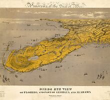 Vintage Map of Florida by AndrewFare