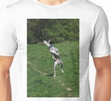 Jumping great dane Unisex T-Shirt