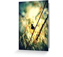 Branch Birdie II Greeting Card