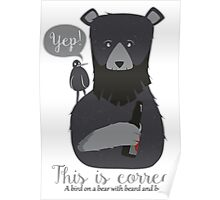 A bear with beard drinking beer Poster