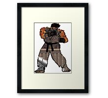 ryu and stage Framed Print
