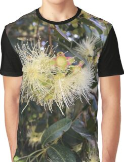 Syzygium australe flowers Graphic T-Shirt